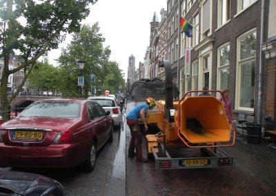 Snoeien Oudegracht Utrecht